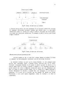 Sisteme de Operare - Gestiunea Informatiei - Pagina 4