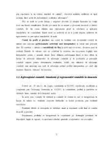 Auditul Contului de Profit și Pierdere - Pagina 3