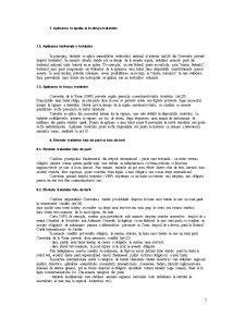 Dreptul Tratatelor - Pagina 5