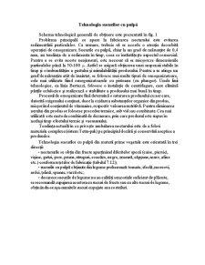 Tehnologia Sucurilor cu Pulpă - Pagina 1