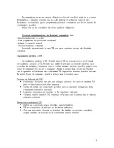 Drept Comercial Curs 3 - Pagina 2