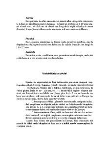 Trifoiul Rosu - Trifolium Pratense - Pagina 5