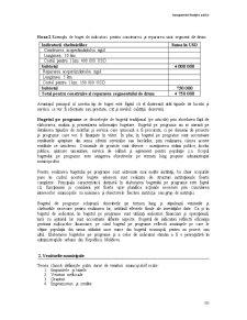 Managementul Finanțelor Publice - Pagina 3