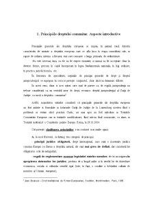 Principiile Dreptului European - Pagina 3