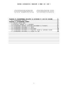 Contabilitatea Financiară a Firmei - Pagina 1