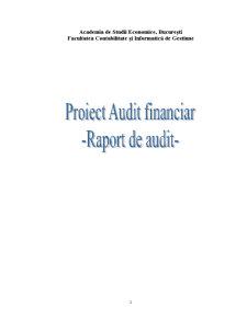 Raport de Audit - Pagina 1