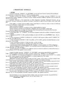 Raport de Audit - Pagina 3