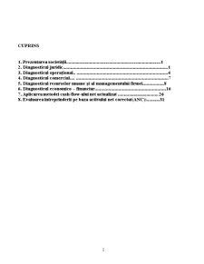 Evaluarea Intreprinderii - SC Instal SA - Pagina 2