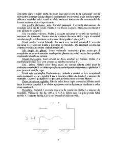 Proiectare Menghina - Pagina 5