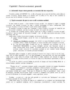 Analiza Financiar Contabila Azomures SA - Pagina 3
