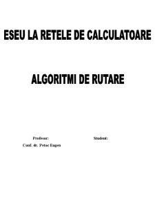 Algoritmi de Rutare - Pagina 1
