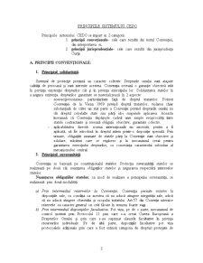 CEDO - Garantii Procedurale - Pagina 3