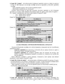 Contabilitate Proceduri - Pagina 2