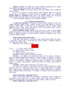 Contabilitatea Stocurilor și a Producției în Curs de Execuție - Pagina 2