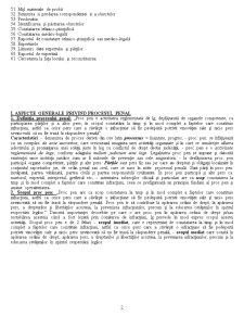 Elemente de Procedura Penala - Pagina 2