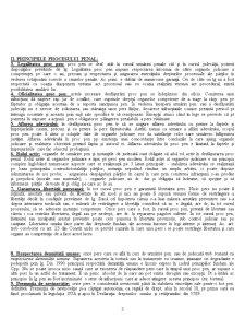 Elemente de Procedura Penala - Pagina 3