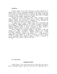Tehnici Comerciale FLo și JO - Pagina 2