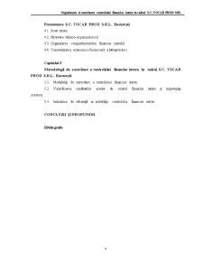 Organizarea și Exercitarea Controlului Financiar Intern în Cadrul SC Tocar Prod SRL - Pagina 4