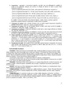 Arboricultură - Pagina 2