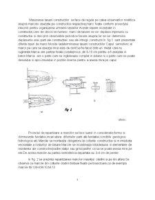 Urmarirea  Comportari in Timp a Constructiilor - Pagina 5