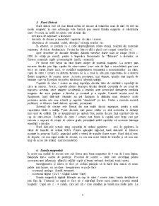 Stocarea Datelor Multimedia - Pagina 4