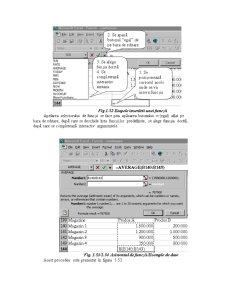 Utilizarea Functiilor Excel - Pagina 3