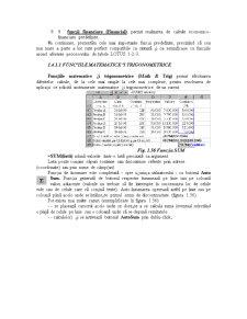 Utilizarea Functiilor Excel - Pagina 5