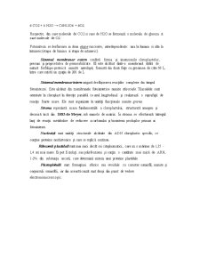 Fiziologia Plantelor - Pagina 5