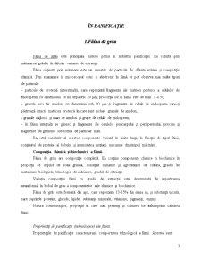 Tehnologia Produselor de Morarit si Panificatie - Fabrica de Paine - Pagina 3