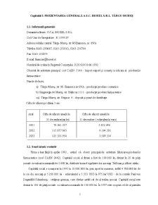 Contabilitatea Operatiunilor de Import - Pagina 3