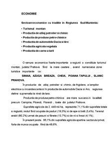 Management - Motelul National - Pagina 3