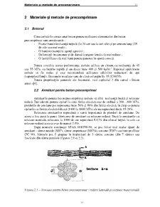 Beton Prefabricat - Pagina 5