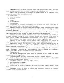 Ambalarea Sucurilor Naturale - Pagina 2