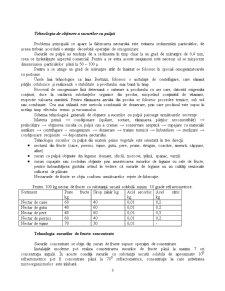 Ambalarea Sucurilor Naturale - Pagina 3