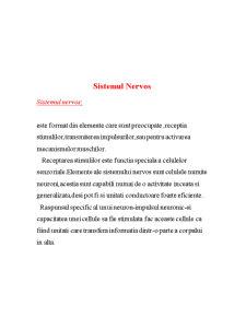 Sistemul Nervos - Pagina 1