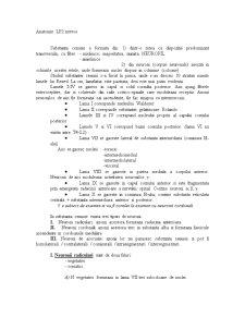 Anatomie LP - Pagina 4