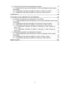 Contabilitate în Comerț și Turism - Pagina 3