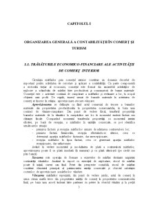 Contabilitate în Comerț și Turism - Pagina 4