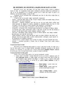 Sistemul de Gestiune a Bazelor de Date Access - Pagina 1