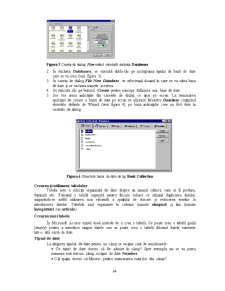 Sistemul de Gestiune a Bazelor de Date Access - Pagina 3