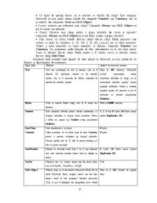 Sistemul de Gestiune a Bazelor de Date Access - Pagina 4