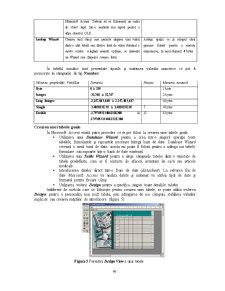 Sistemul de Gestiune a Bazelor de Date Access - Pagina 5