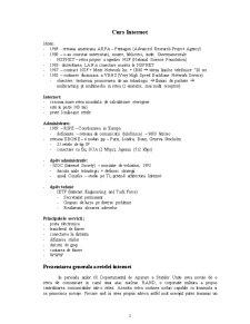 Internetul - Pagina 1