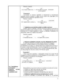 Contabilitate Proceduri - Sinteza - Pagina 5