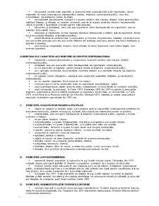 Elemente de Drept International - Pagina 4