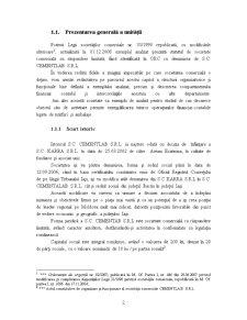 Proiect Economie - SC Cementab SRL - Pagina 4