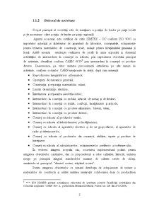 Proiect Economie - SC Cementab SRL - Pagina 5