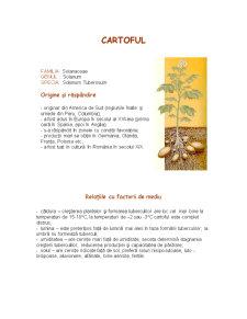 Cultura Cartofului - Pagina 3