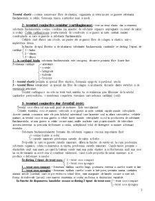 Tesuturile - Pagina 3