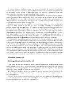 Drept Civil - Capitolul 1 - Pagina 4